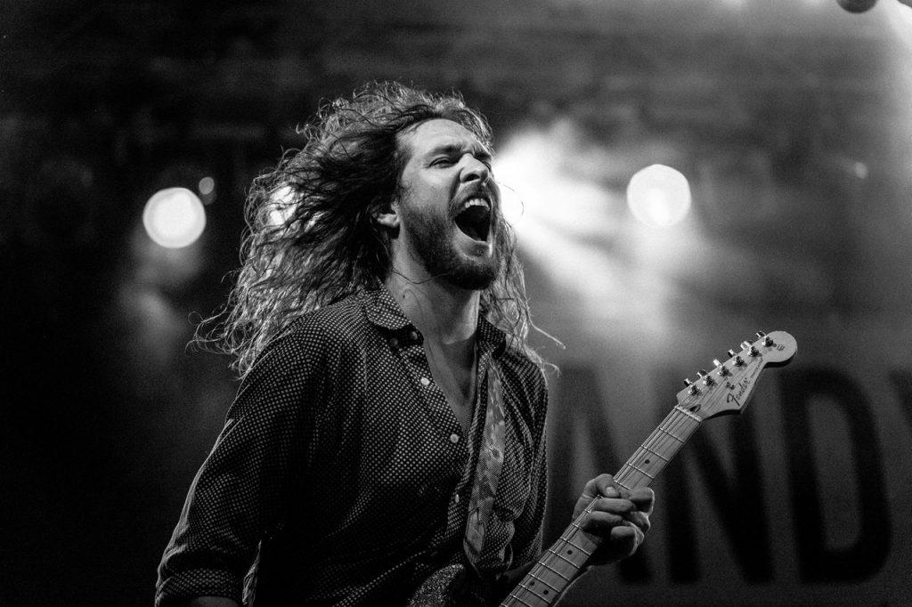 guitarist loud concert best concert earplugs
